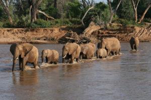 10 Top Tourist Attractions in Kenya