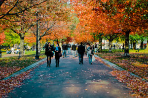 10 Top Tourist Attractions in Boston