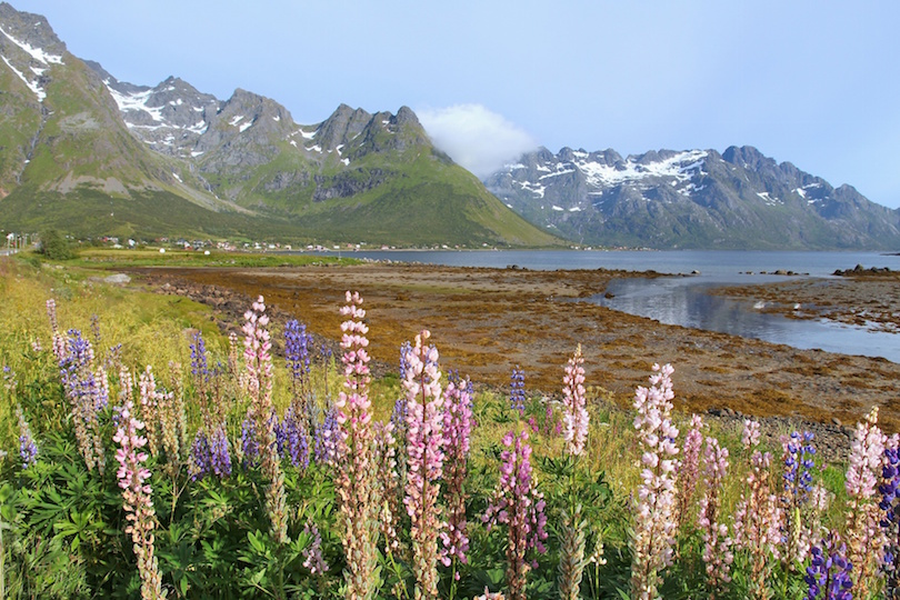 Lofoten landscape in Norway