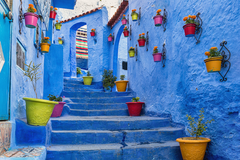 Blue staircase and wall decorated with colourful flowerpots, Chefchaouen medina in Morocco