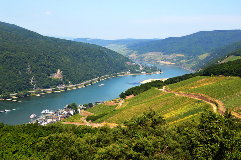 Rhine valley in Rudesheim