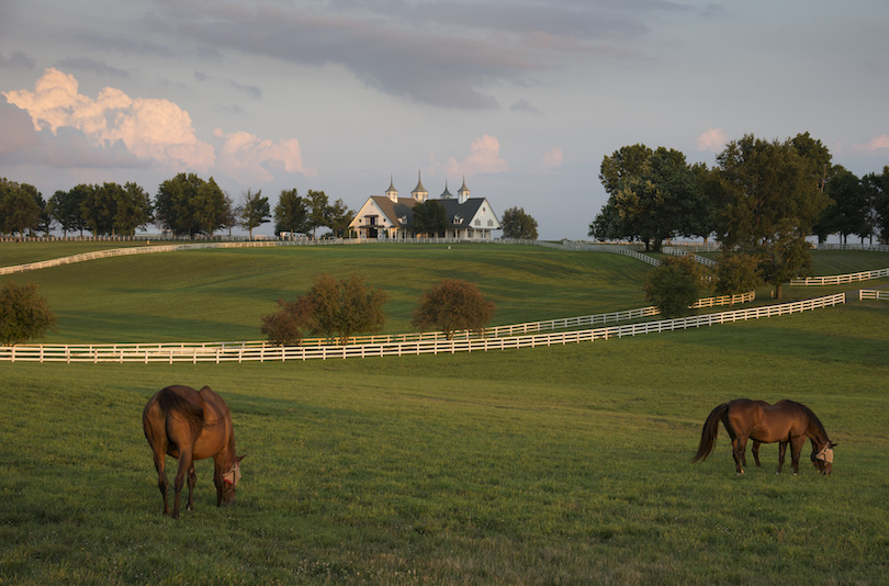 10 Best Places to Visit in Kentucky (with Photos & Map