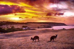 10 Best Islands in Australia