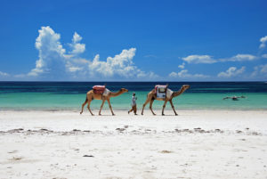 10 Best Beaches in Kenya