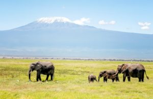 10 Best Places to Visit in Tanzania