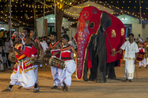 15 Top Tourist Attractions in Sri Lanka