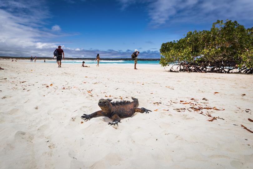 10 Best Beaches In Ecuador With Photos Map Touropia
