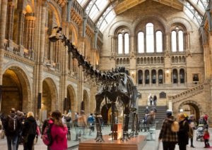 12 Best Museums in London