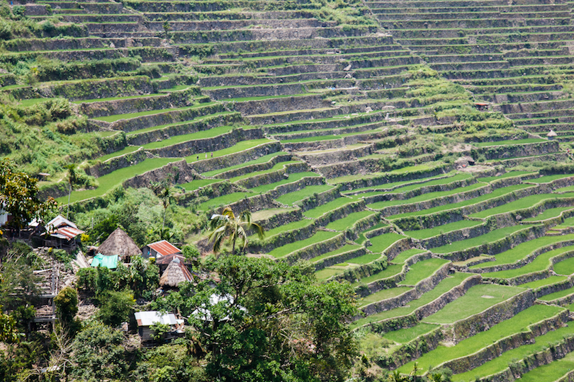 Northern Luzon