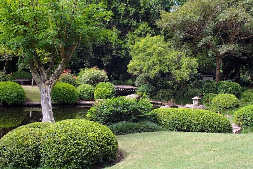 Botanic Gardens Mt. Coot-tha