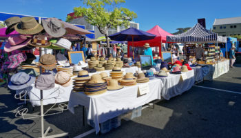 Best Things to do in Nelson, New Zealand