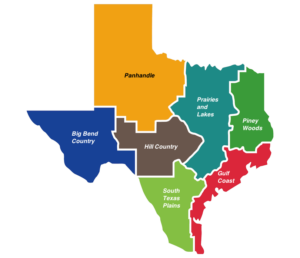 Regions of Texas Map