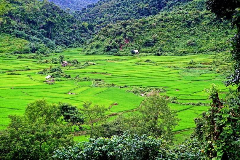 Trekking in Luang Namtha