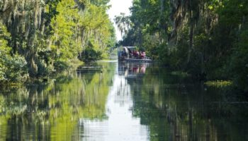 Best Things to Do in Louisiana