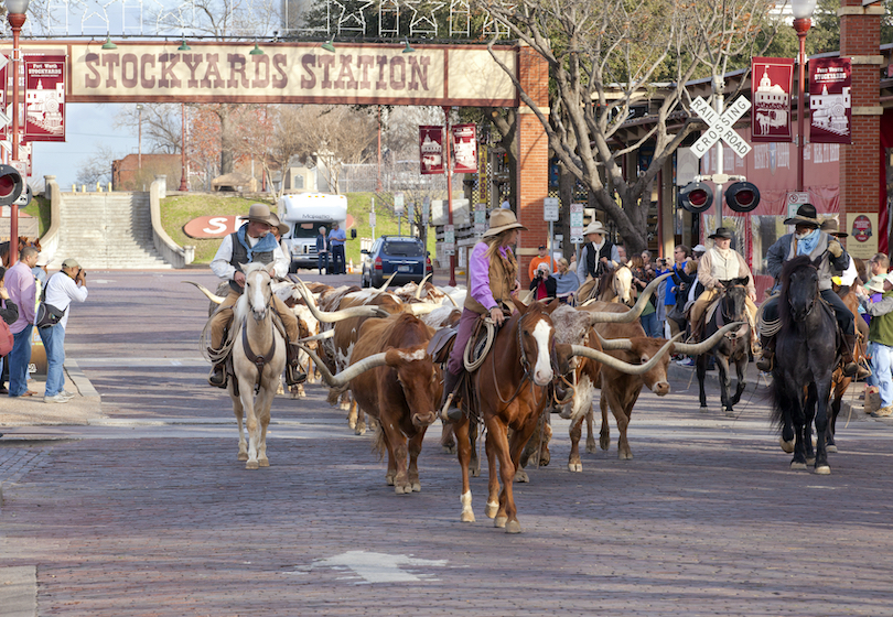 12 Best Things to do in Fort Worth, Texas (with Photos)