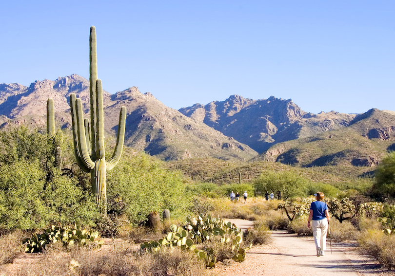 17 Best Things to Do in Tucson, Arizona (with Photos)