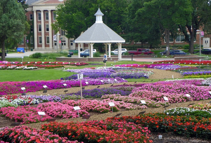 Flower Trial Garden