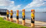 Things to Do in Geelong & the Bellarine Peninsula