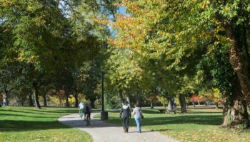 Best Things to Do in Eugene, Oregon
