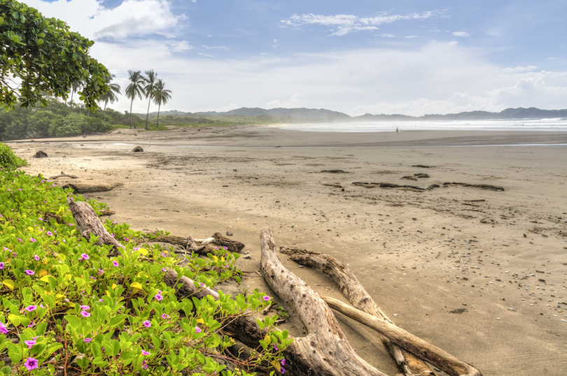 playa_guiones ▷ 10 mejores playas de Costa Rica