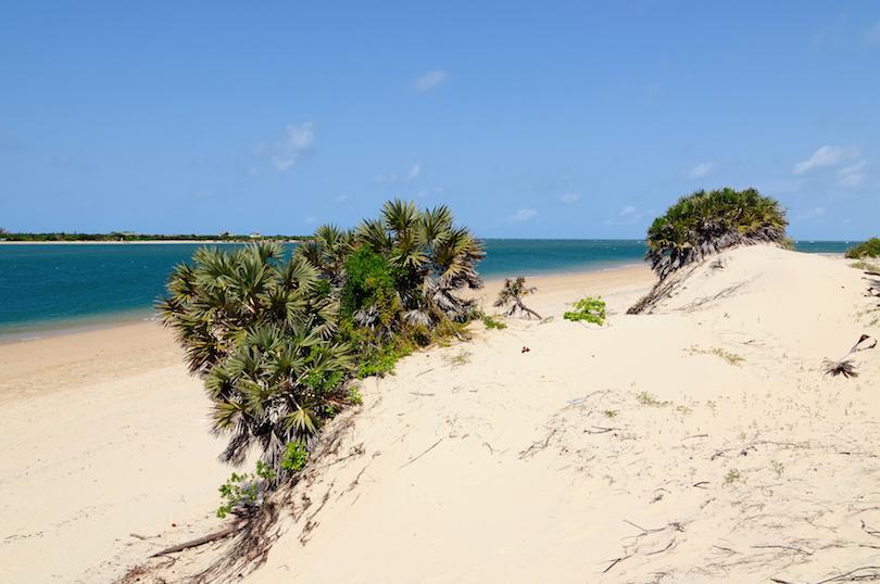 Lamu Beaches
