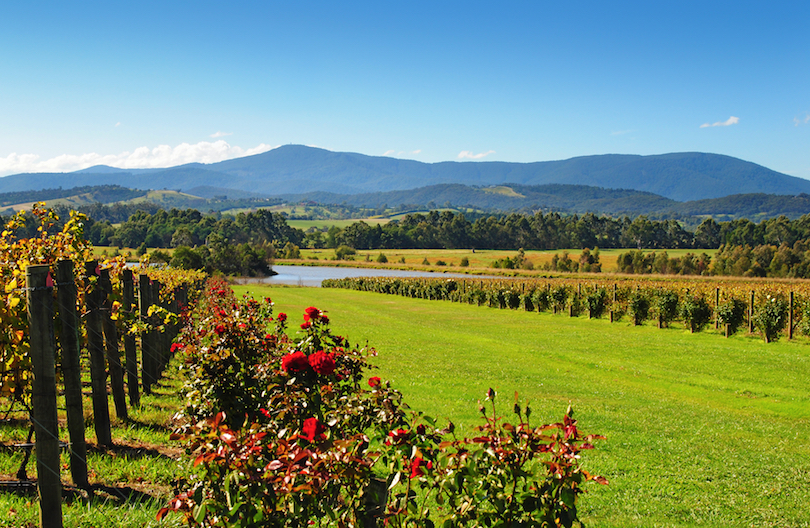 #1 of Best Day Trips From Melbourne