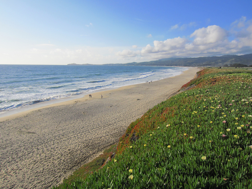 Best day trip from san francisco