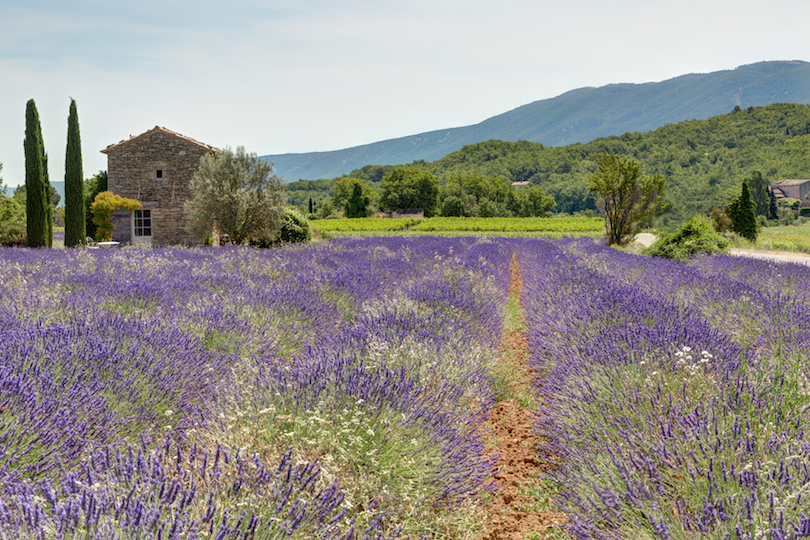 10 Best Places To Visit In France With Photos Map
