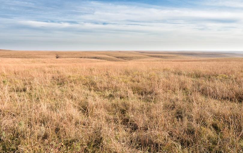 Reserva Nacional Tallgrass Prairie