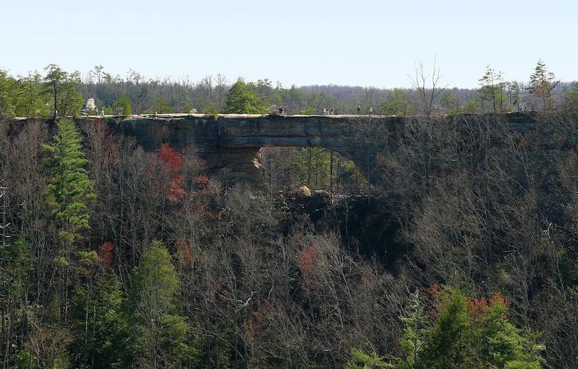 Parque Natural Bridge State Resort