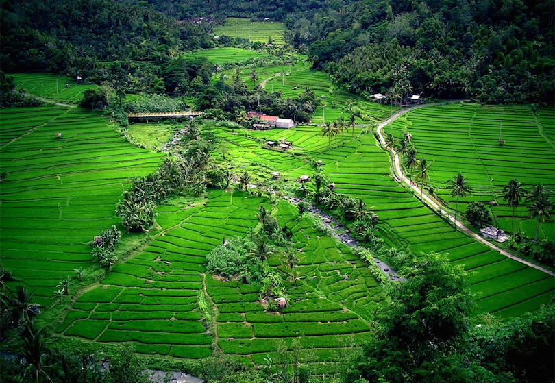 #1 of Best Places To Visit In Indonesia