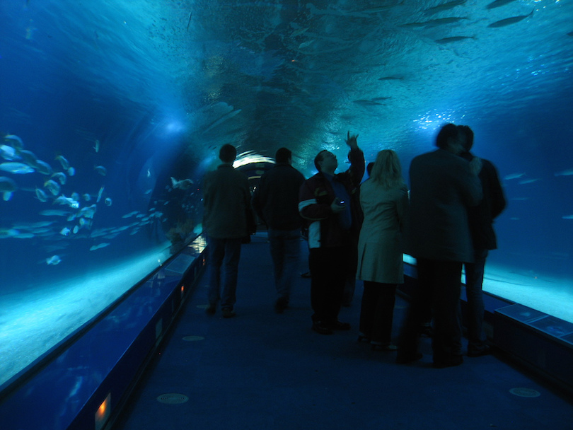 10 Largest Aquariums in the World (with Map & Photos ...