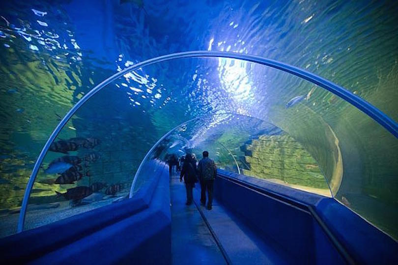 10 Largest Aquariums In The World With Photos Map Touropia