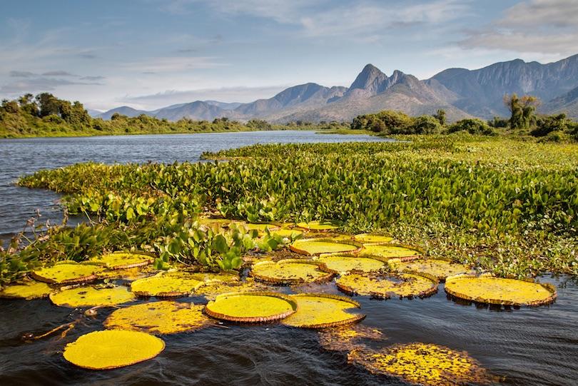 Parque Nacional Pantanal Matogrossense