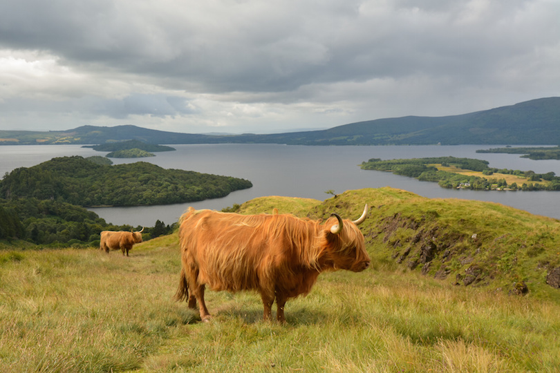 Loch Lomond y los Trossachs
