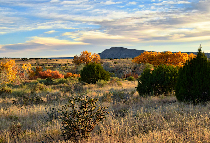 15 Most Charming Small Towns in New Mexico (with Photos