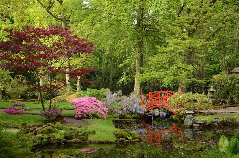 Japanese Garden at Clingendael