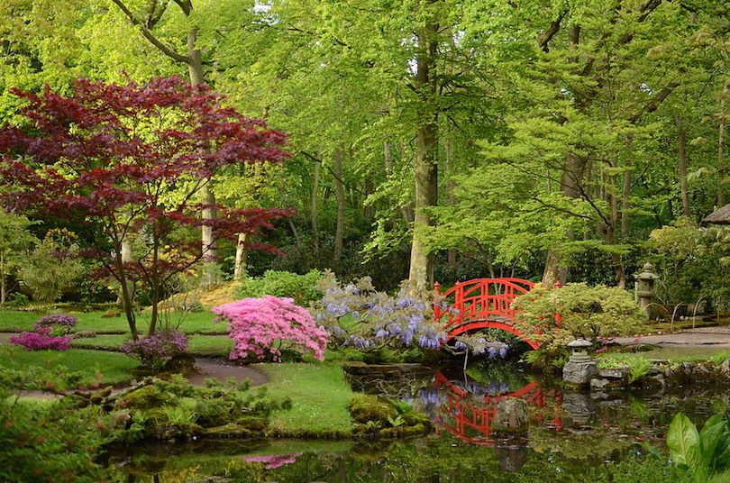 Japanese Garden at Clingendael