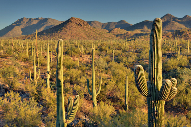 Arizona Points Of Interest Map.10 Top Tourist Attractions In Arizona With Photos Map Touropia
