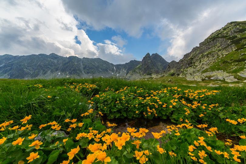 Alpes de Transilvania