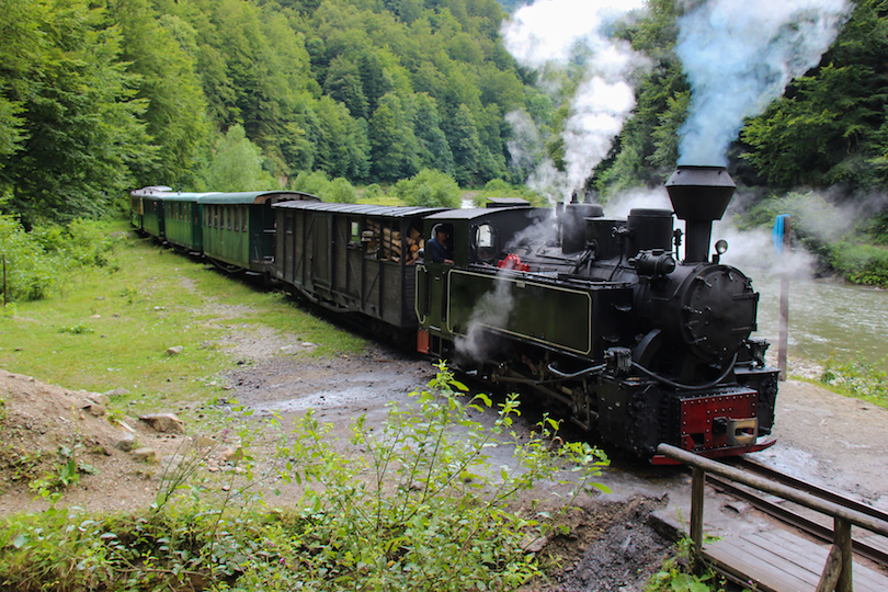 Vaser Valley Forestry Railway